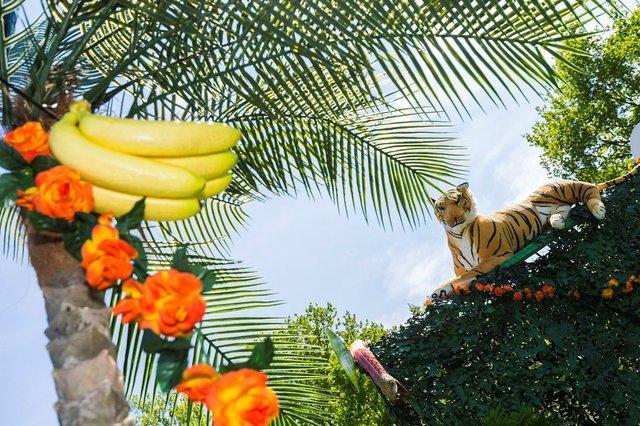 Dschungelfest