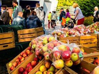 Herbstmarkt_Thorsten Hübner_Teaser