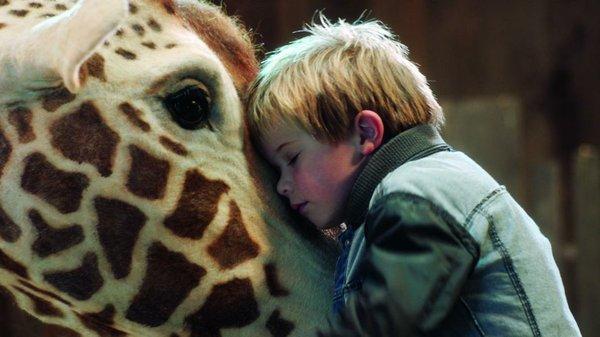 K800_Filme_HB_Mär18_Giraffe © Lemming Film.JPG