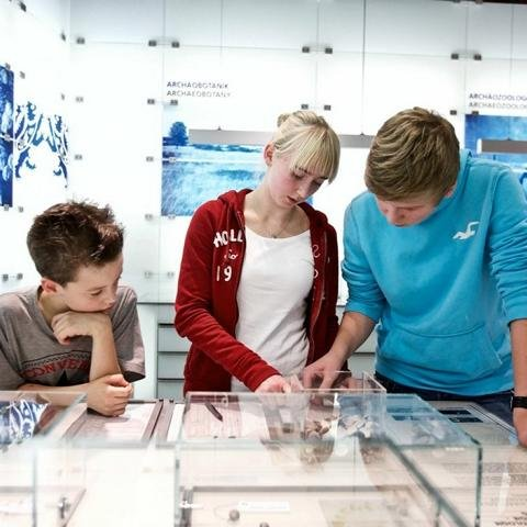 Museum für Archäologie