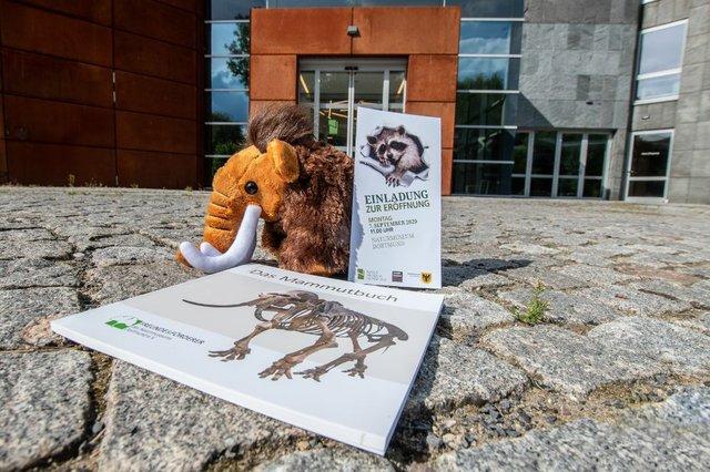 Naturmuseum Dortmund
