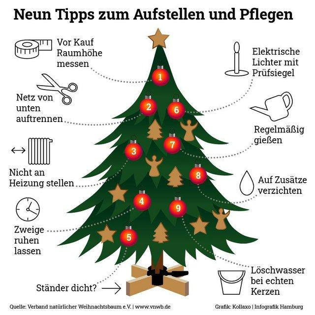 (c) Verband natürlicher Weihnachtsbaum.jpg