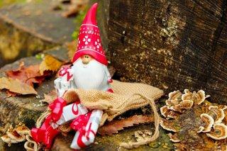 Nikolaus, Weihnachten im Wald
