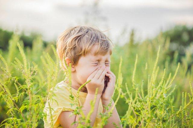 Frühjahr, Pollen, Allergie, Heuschnupfen bei Kindern