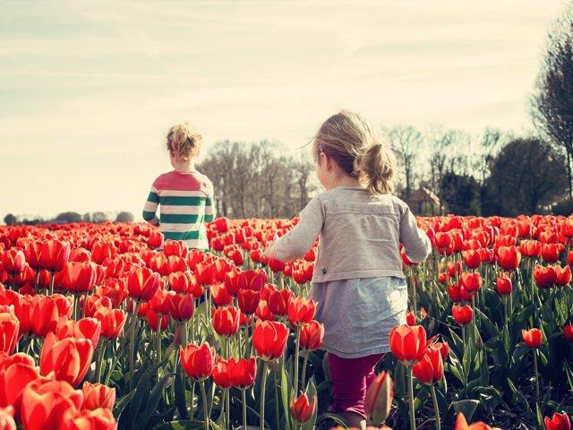 Wach auf, es ist Frühling