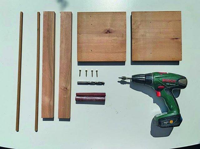 DIY Apfelringtrockner, Apfelchips