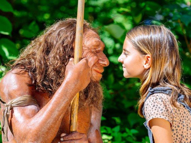 Neanderthalmuseum, Mr. N