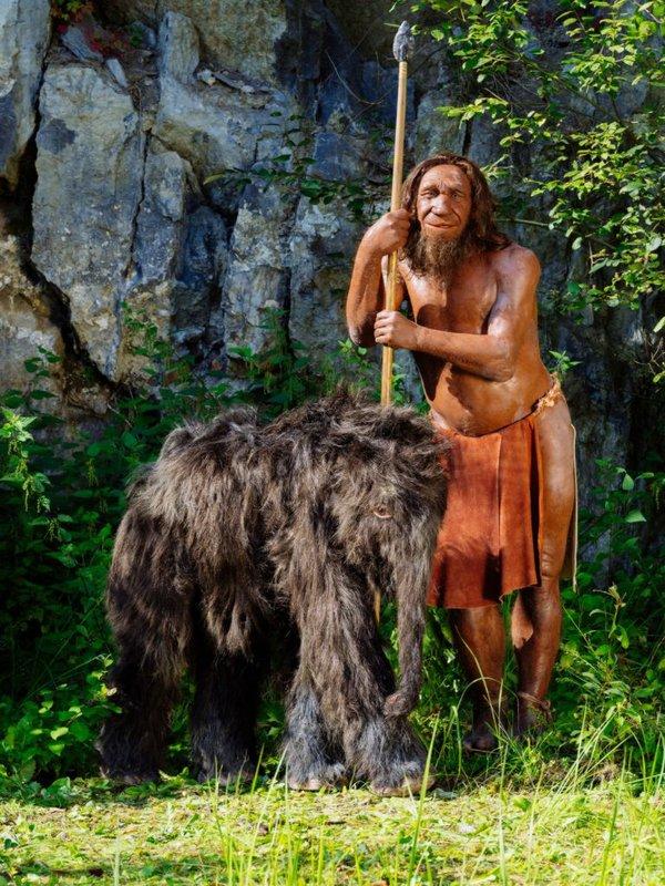 Mammutbaby und Mr. N im Neanderthalmuseum